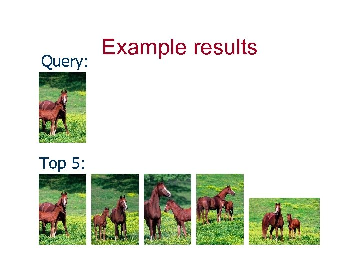 Query: Top 5: Example results
