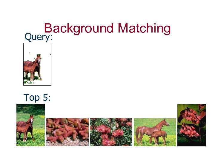 Background Matching Query: Top 5: