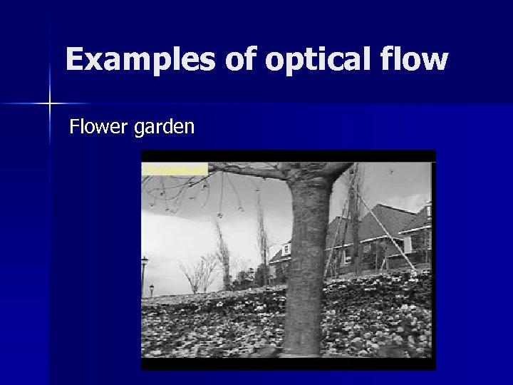 Examples of optical flow Flower garden