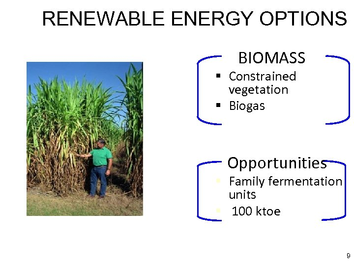 RENEWABLE ENERGY OPTIONS BIOMASS § Constrained vegetation § Biogas Opportunities § Family fermentation units