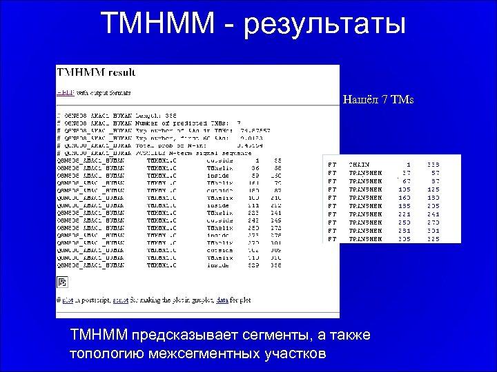 TMHMM - результаты Нашёл 7 TMs TMHMM предсказывает сегменты, а также топологию межсегментных участков