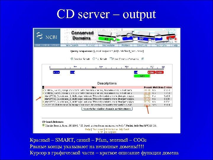 CD server – output Красный – SMART, синий – Pfam, зеленый – COGs Рваные