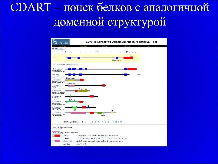 CDART – поиск белков с аналогичной доменной структурой