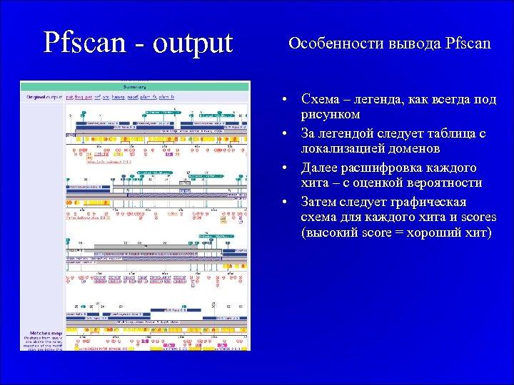 Pfscan - output Особенности вывода Pfscan • Схема – легенда, как всегда под рисунком