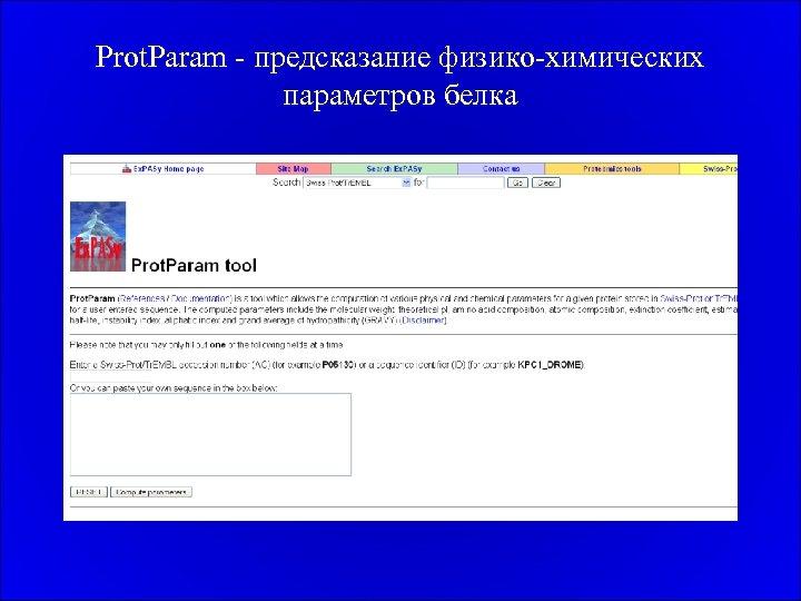 Prot. Param - предсказание физико-химических параметров белка