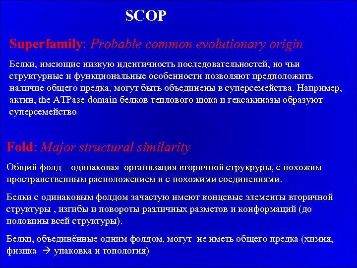 SCOP Superfamily: Probable common evolutionary origin Белки, имеющие низкую идентичность последовательностей, но чьи структурные