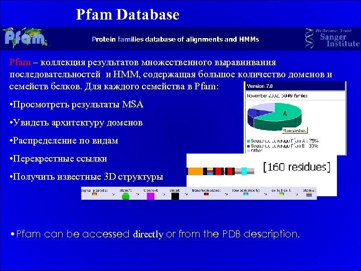 Pfam Database Pfam – коллекция результатов множественного выравнивания последовательностей и HMM, содержащая большое количество