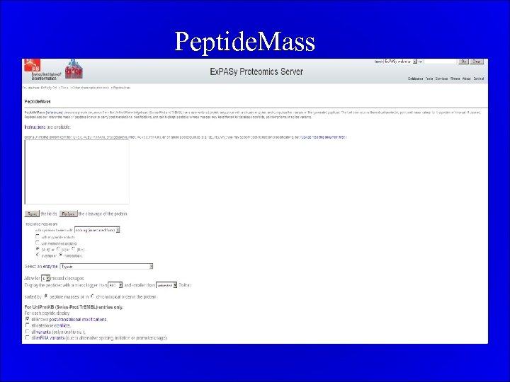 Peptide. Mass