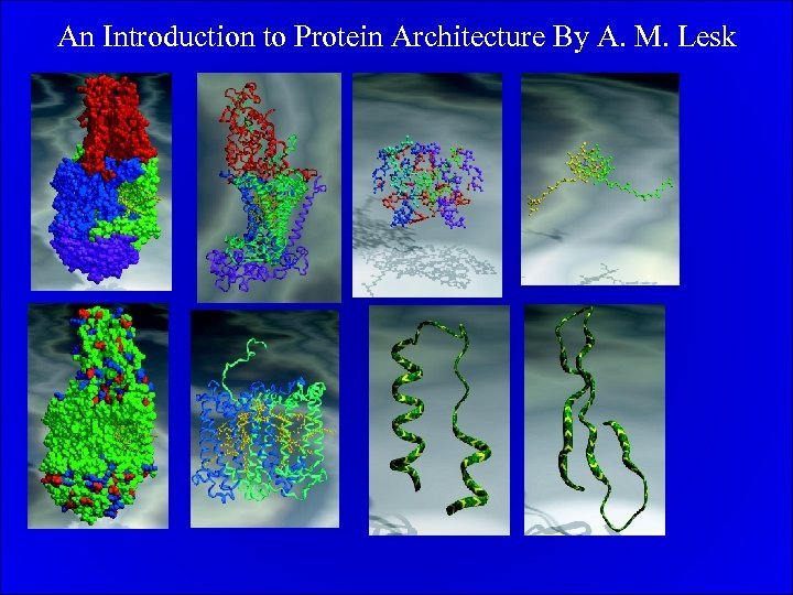 An Introduction to Protein Architecture By A. M. Lesk