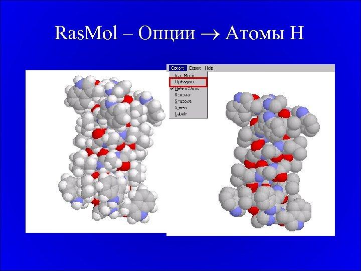 Ras. Mol – Опции Атомы H