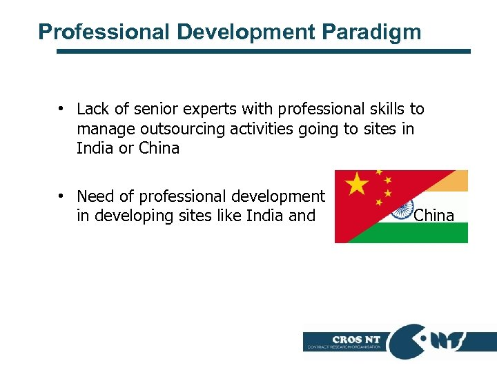 Professional Development Paradigm • Lack of senior experts with professional skills to manage outsourcing