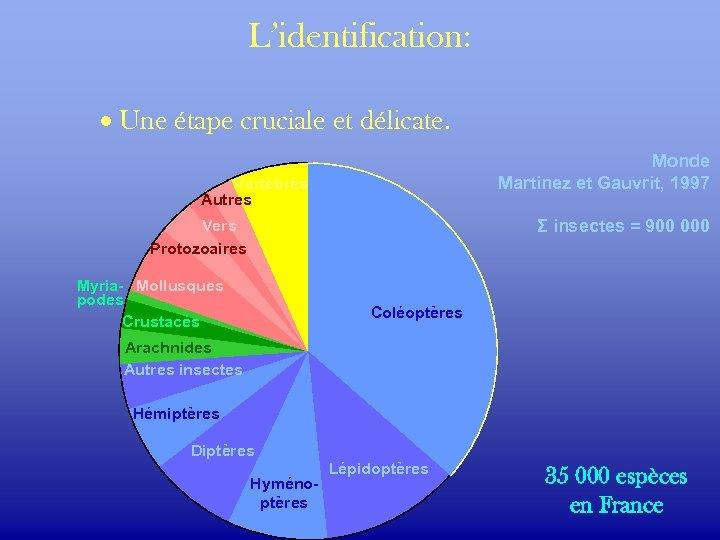 L'identification: · Une étape cruciale et délicate. Monde Martinez et Gauvrit, 1997 Vertébrés Autres