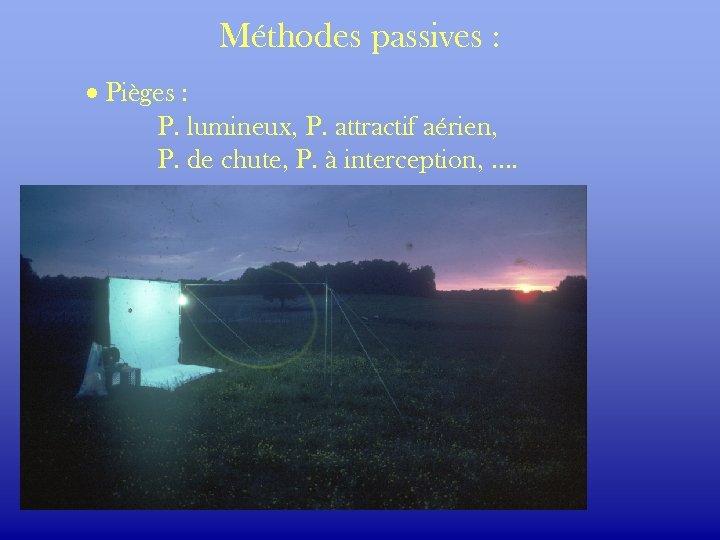 Méthodes passives : · Pièges : P. lumineux, P. attractif aérien, P. de chute,