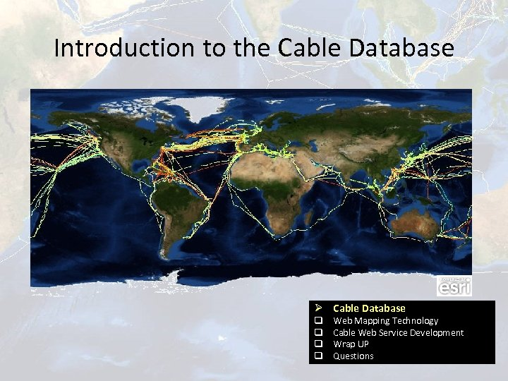 Introduction to the Cable Database Ø Cable Database q q Web Mapping Technology Cable