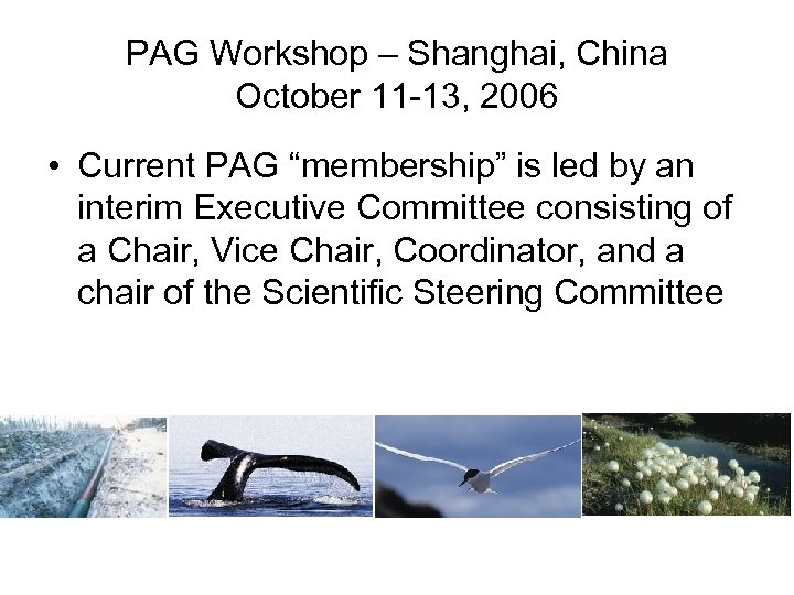 "PAG Workshop – Shanghai, China October 11 -13, 2006 • Current PAG ""membership"" is"