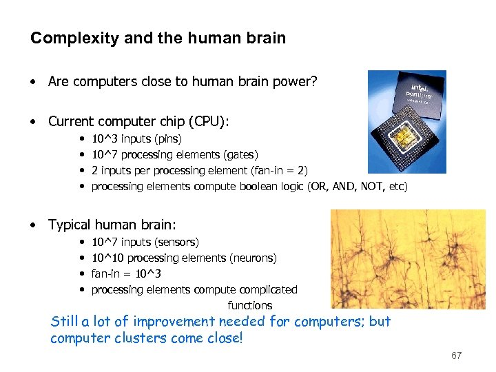Complexity and the human brain • Are computers close to human brain power? •