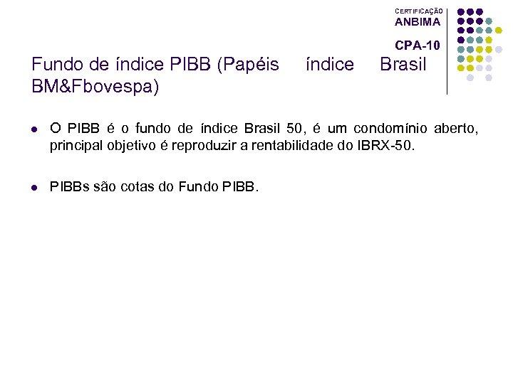 CERTIFICAÇÃO ANBIMA CPA-10 Fundo de índice PIBB (Papéis BM&Fbovespa) índice Brasil l O PIBB