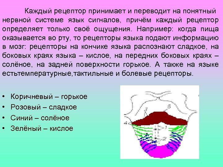 Каждый рецептор принимает и переводит на понятный нервной системе язык сигналов, причём каждый рецептор