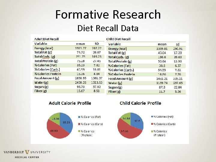 Formative Research Diet Recall Data