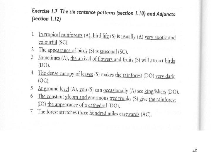 SENTENCE ELEMENTS 40