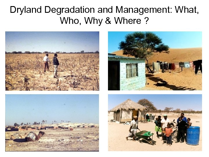 Dryland Degradation and Management: What, Who, Why & Where ?