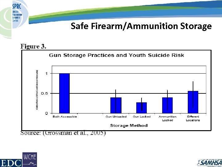 Safe Firearm/Ammunition Storage