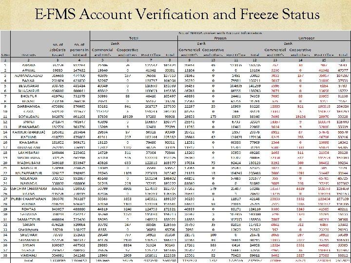E-FMS Account Verification and Freeze Status