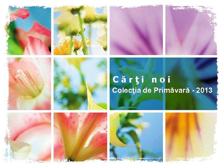 Cărţi noi Colecţia de Primăvară - 2013