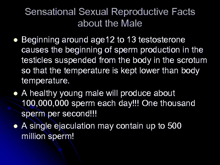 Sensational Sexual Reproductive Facts about the Male l l l Beginning around age 12