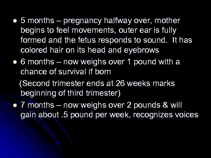 5 months – pregnancy halfway over, mother begins to feel movements, outer ear is