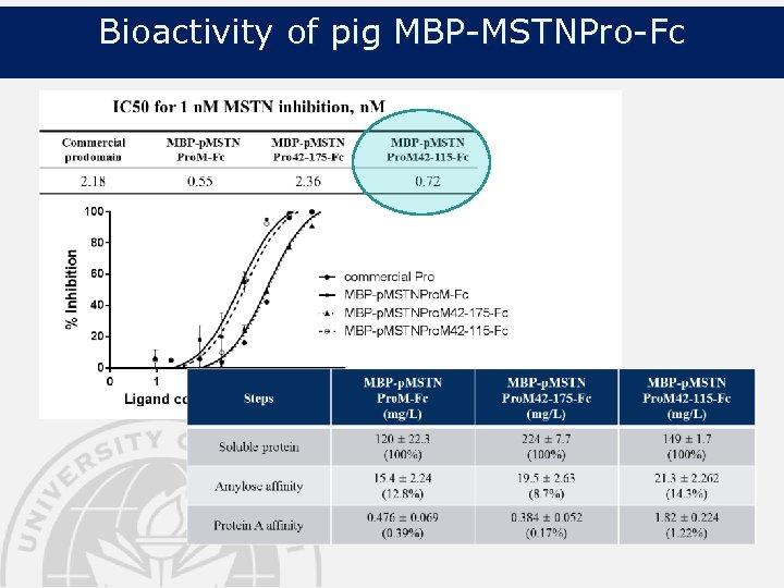 Bioactivity of pig MBP-MSTNPro-Fc