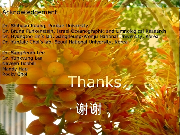 Acknowledgement Dr. Dr. Shihuan Kuang, Purdue University Bruria Funkenstein, Israel Oceanographic and Limnological Research
