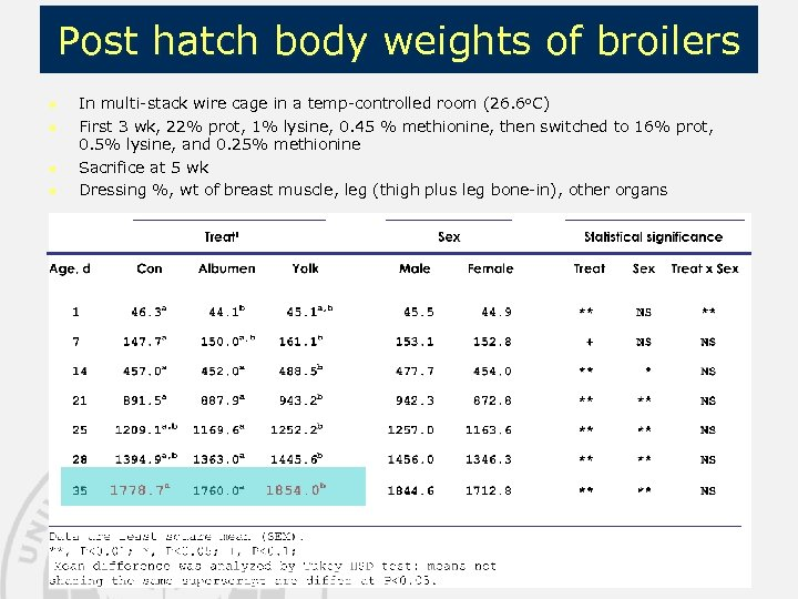Post hatch body weights of broilers n n In multi-stack wire cage in a