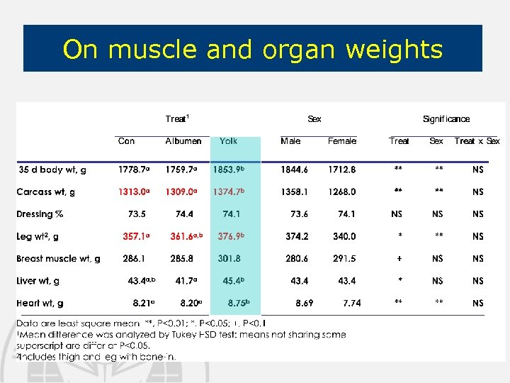 On muscle and organ weights