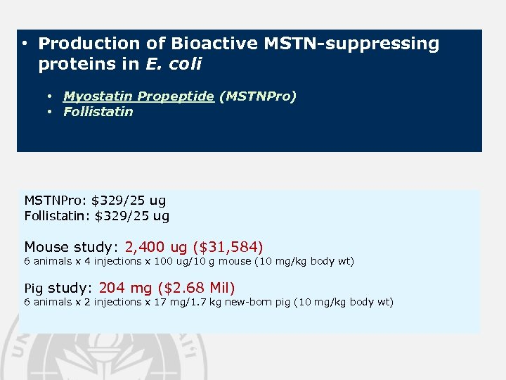 • Production of Bioactive MSTN-suppressing proteins in E. coli • Myostatin Propeptide (MSTNPro)