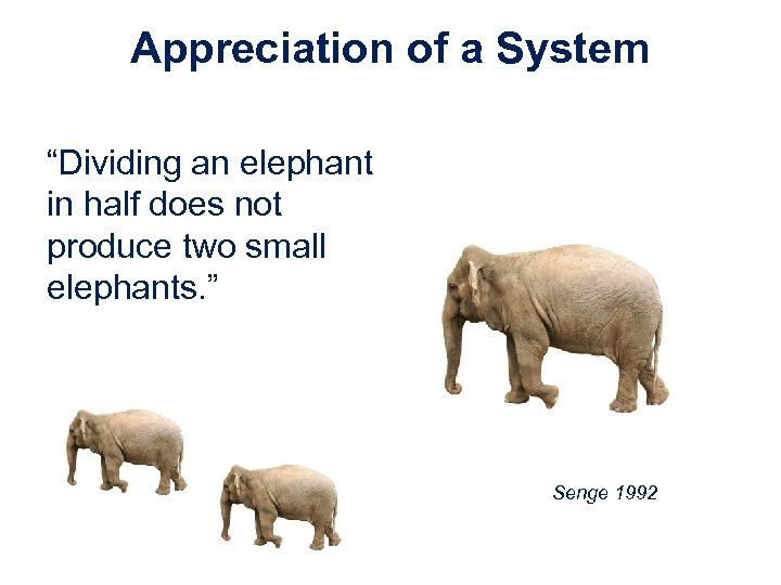 "Appreciation of a System ""Dividing an elephant in half does not produce two small"