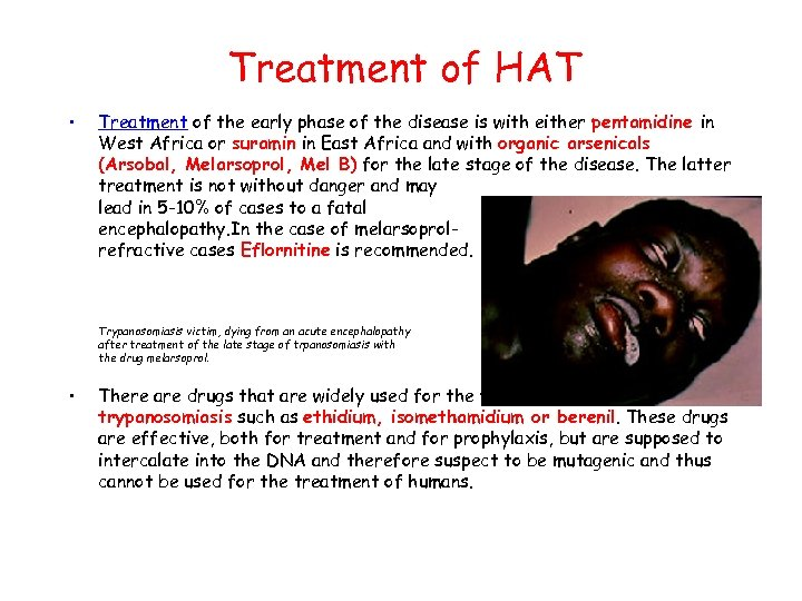 Treatment of HAT • Treatment of the early phase of the disease is with