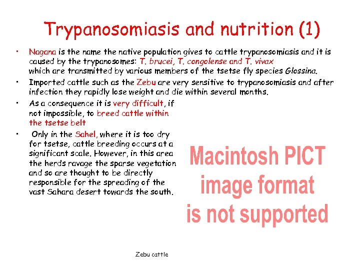 Trypanosomiasis and nutrition (1) • • Nagana is the name the native population gives