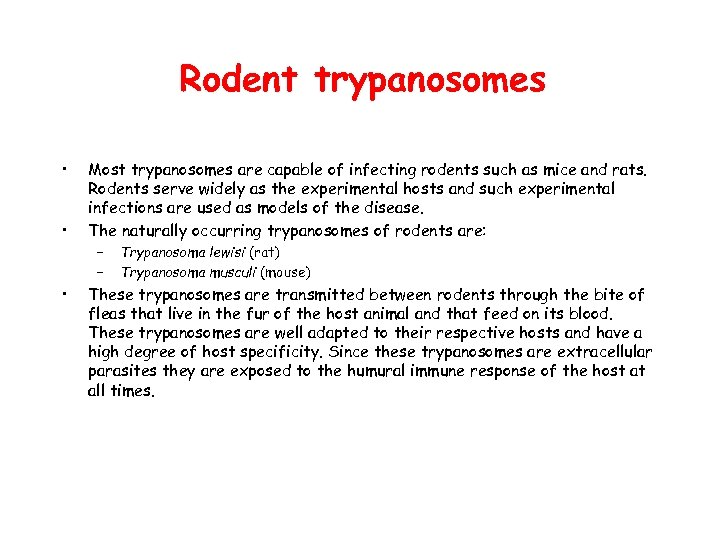 Rodent trypanosomes • • • Most trypanosomes are capable of infecting rodents such as