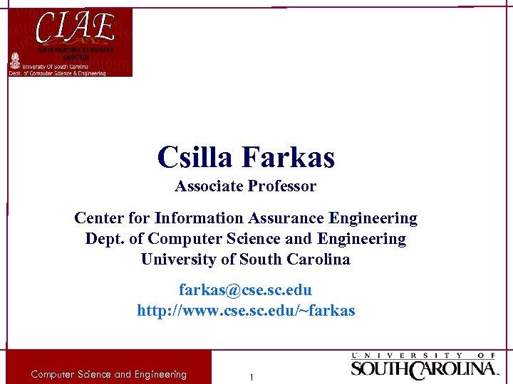 Csilla Farkas Associate Professor Center for Information Assurance Engineering Dept. of Computer Science and