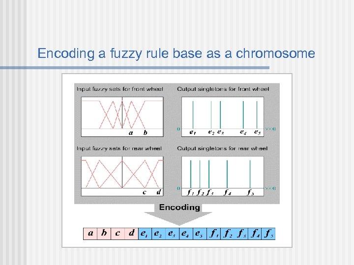 Encoding a fuzzy rule base as a chromosome