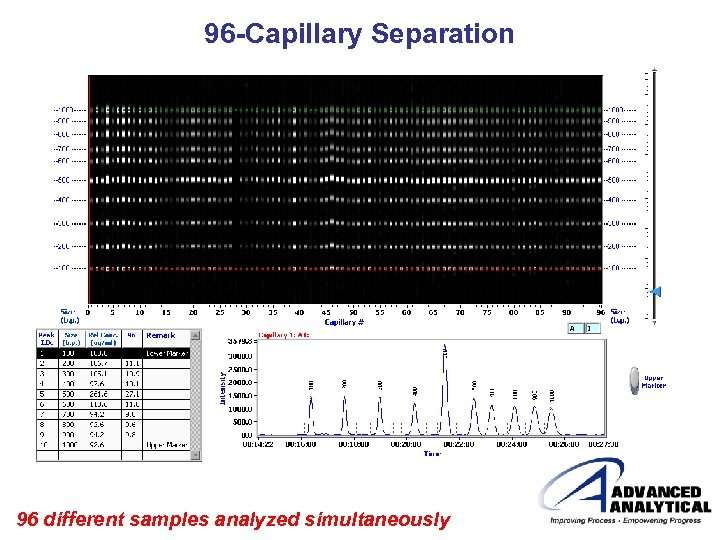 96 -Capillary Separation 96 different samples analyzed simultaneously