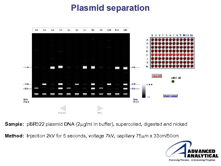 Plasmid separation Sample: p. BR 322 plasmid DNA (2 mg/ml in buffer), supercoiled, digested