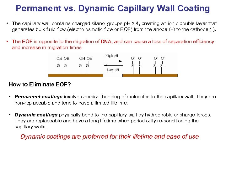 Permanent vs. Dynamic Capillary Wall Coating • The capillary wall contains charged silanol groups