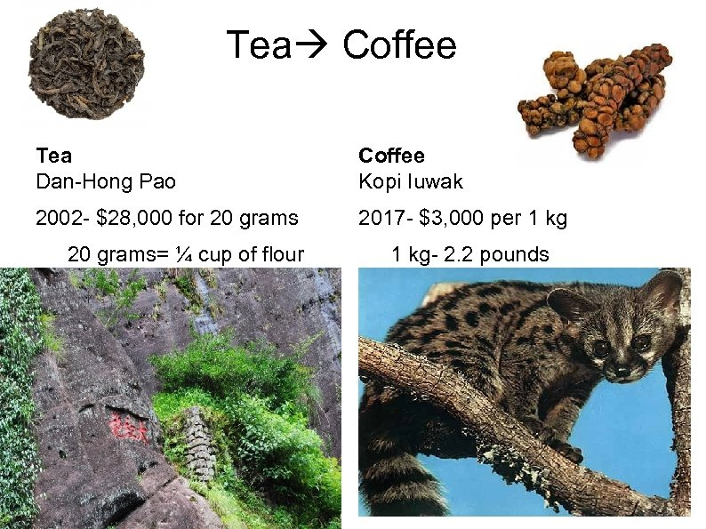 Tea Coffee Tea Dan-Hong Pao Coffee Kopi Iuwak 2002 - $28, 000 for 20