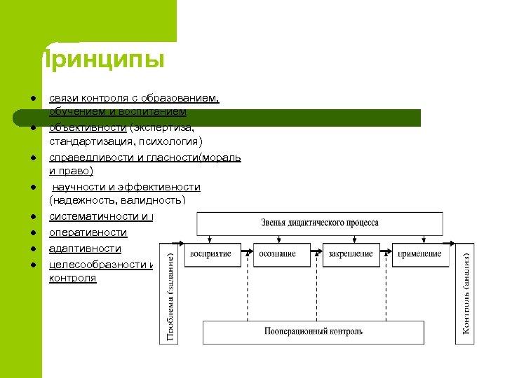 Принципы l l l l связи контроля с образованием, обучением и воспитанием объективности (экспертиза,
