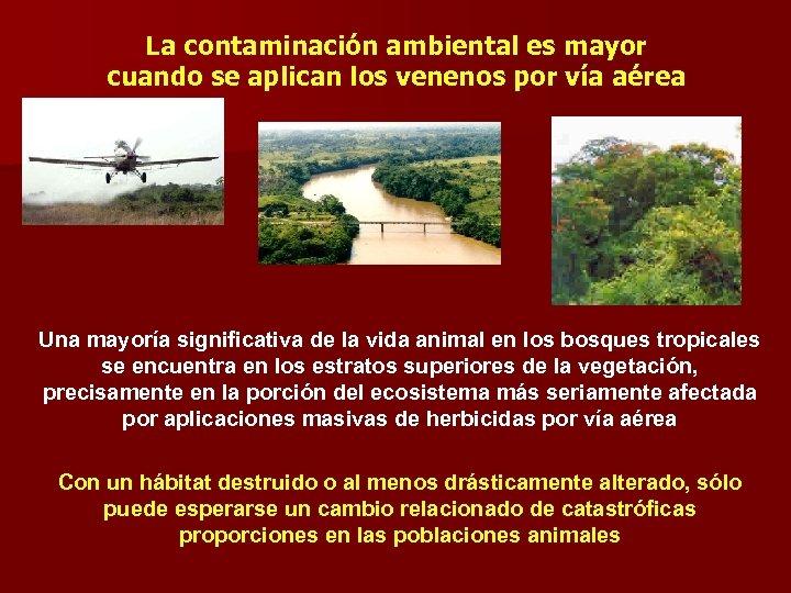 La contaminación ambiental es mayor cuando se aplican los venenos por vía aérea Una