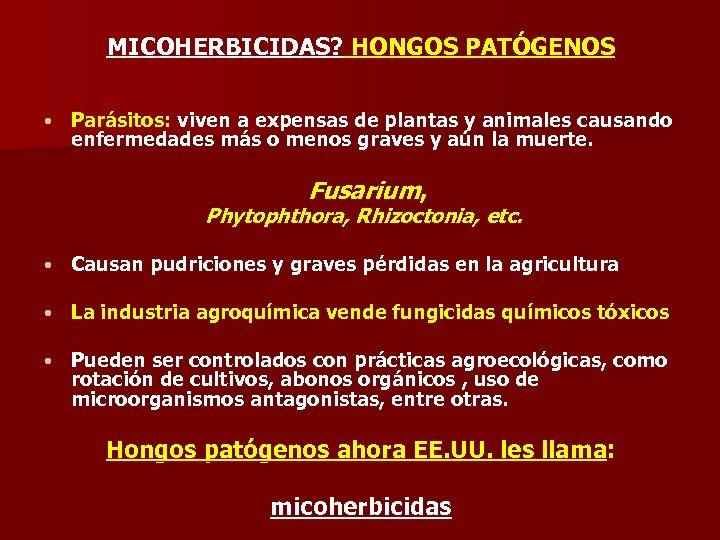 MICOHERBICIDAS? HONGOS PATÓGENOS • Parásitos: viven a expensas de plantas y animales causando enfermedades