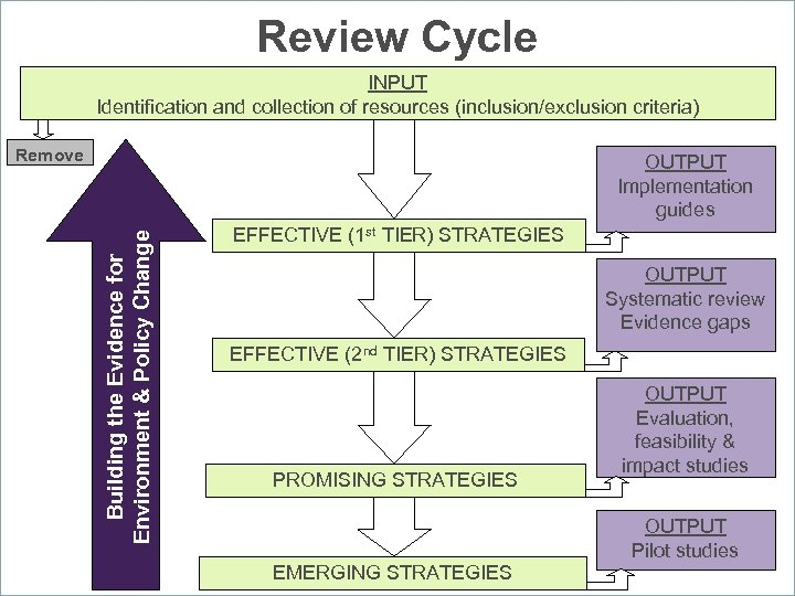 Review Cycle INPUT Identification and collection of resources (inclusion/exclusion criteria) Remove Building the Evidence