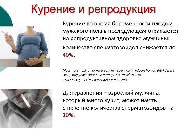 Курение и репродукция Курение во время беременности плодом мужского пола в последующем отражается на